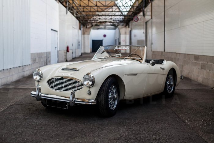 Brillante Austin Healey 100/6 BN4 1958